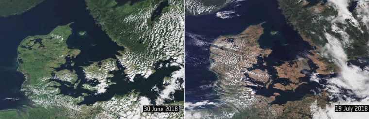 Image: Europe drought