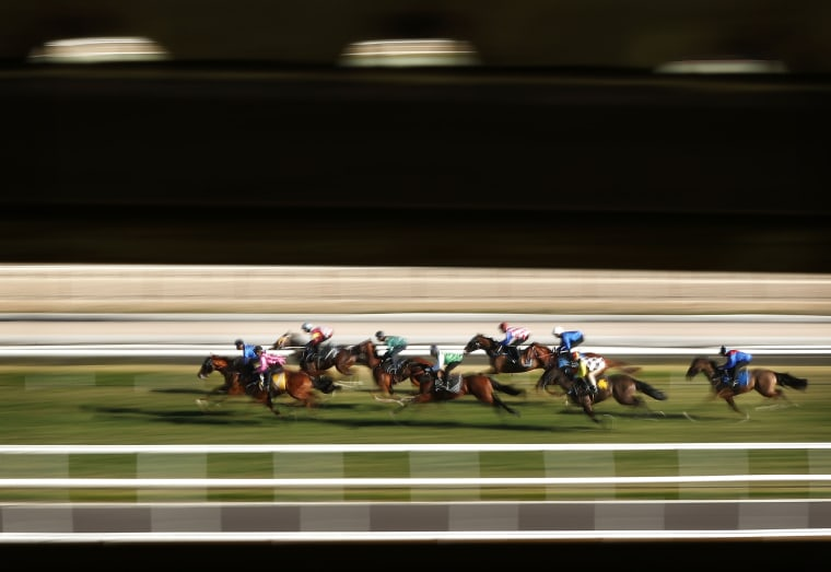 Image: Horses race during barrier trials at Rosehill Gardens
