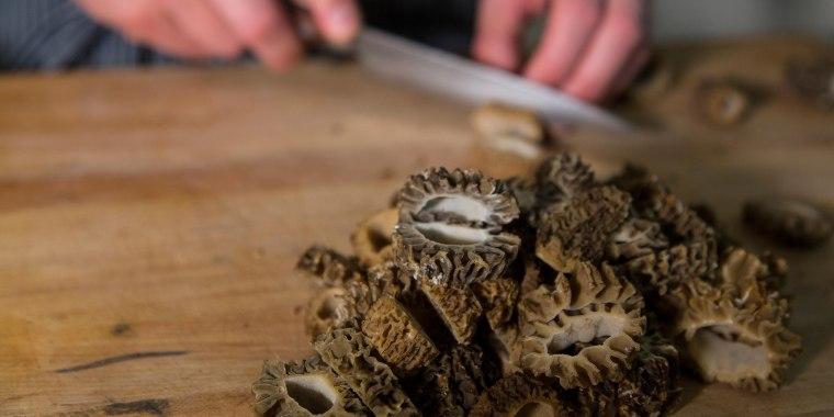 Chef prepares freshly gathered morel mushrooms on a cutting board