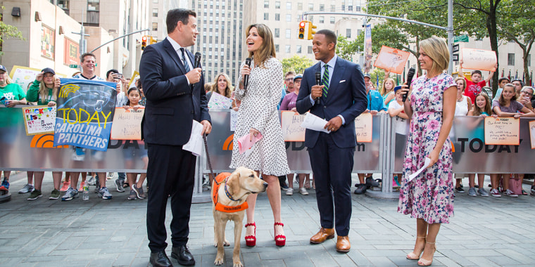 Dylan Dreyer Gal Meets Glam Dress