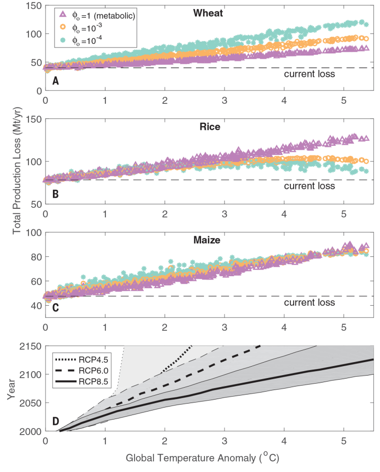 Global loss of crop production owing to the impact of climate warming on insect pests.