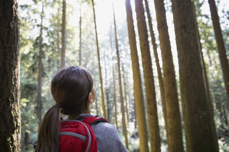 Girl looking up at tall trees in woods