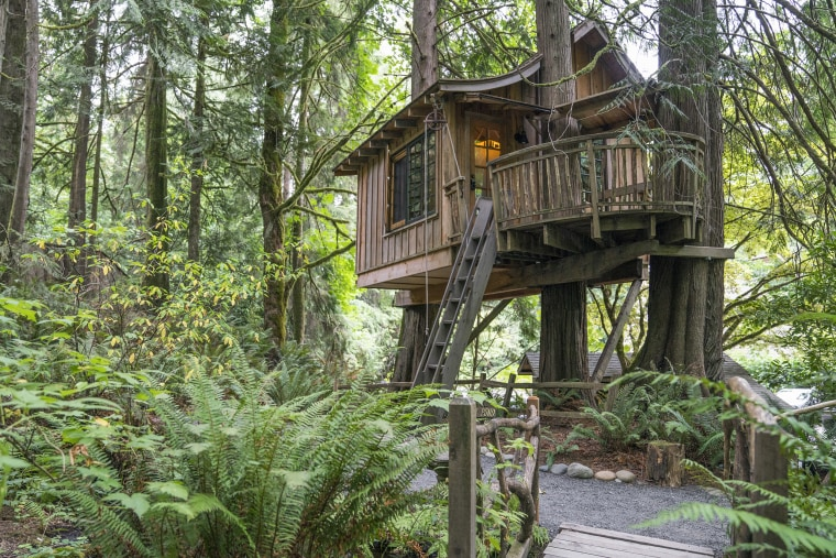 Pete Nelson TreeHouse Point Upper Pond