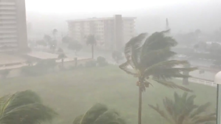 Image: Trees sway as Storm Gordon descends on Fort Lauderdale, Florida, U.S.