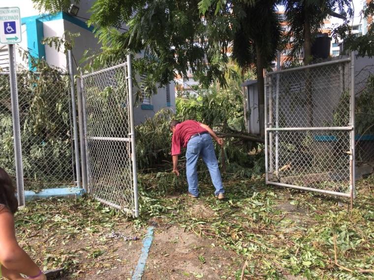 Survivors: Hurricane Maria