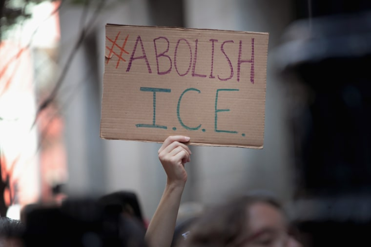 Image: Activists Rally To Abolish ICE And End Immigration Enforcement In Chicago