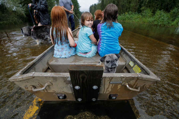 Image: Iva Williamson, 4 years old, peers behind her as she joins neighbors and pets in fleeing rising flood waters in the aftermath of Hurricane Florence in Leland, North Carolina