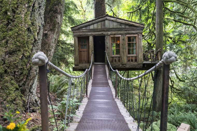 Pete Nelson TreeHouse Point