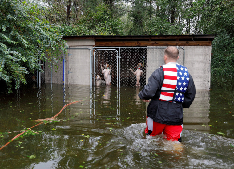Image: Panicked dogs that were left caged by an owner who fled rising flood waters in the aftermath of Hurricane Florence, are rescued by volunteer rescuer Ryan Nichols of Longview, Texas, in Leland, North Carolina