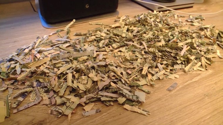 Little boy who shredded $1,000