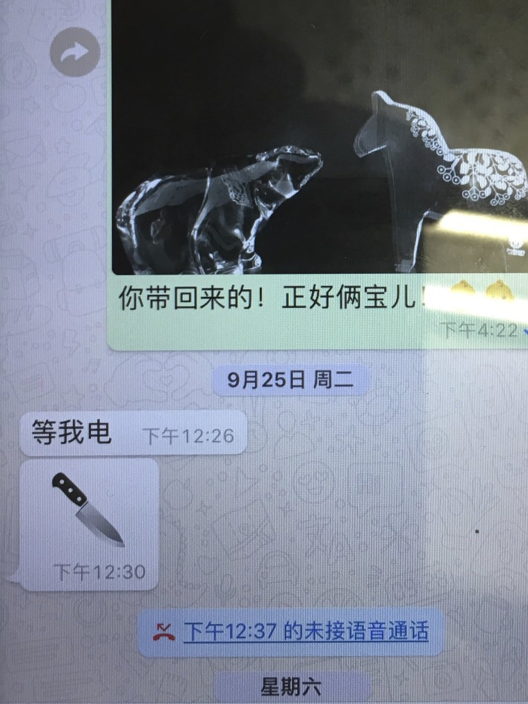 The last messages sent by Meng Hongwei to his wife.