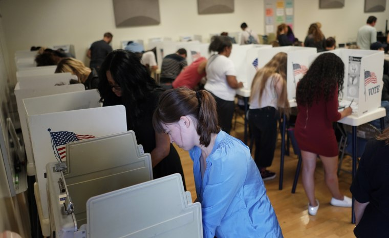 Image: Early midterm elections voting in California