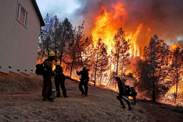 Image: U.S. Forest Service firefighters monitor a back fire while battling to save homes at the Camp Fire in Paradise