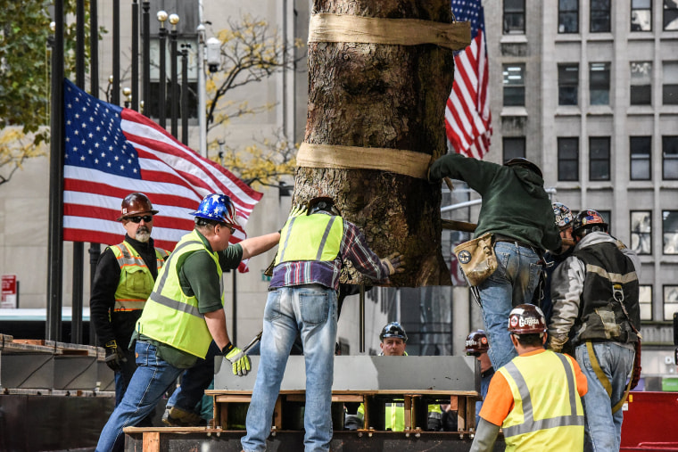 Image: Workers place the Rockefeller Center Christmas tree in its stand in New York City
