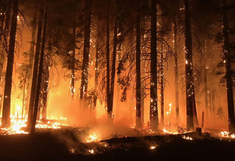 Camp Fire in Northern California, the state's deadliest wildfire