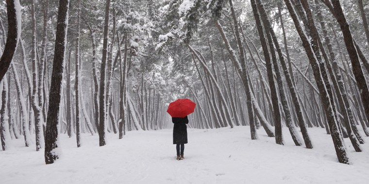 winter walk, winter, snow, red umbrella, seasonal affective disorder, SAD, seasonal depression
