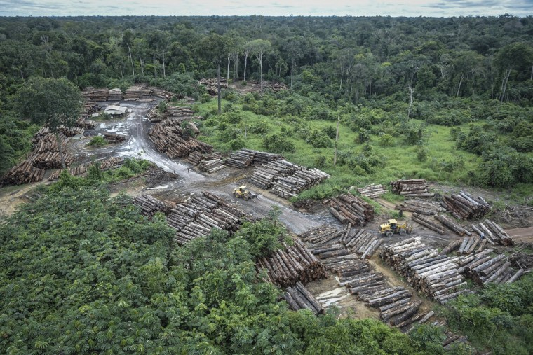 An illegally deforested area on Pirititi indigenous lands is inspected by Brazilian Environmental and Renewable Natural Resources Institute (Ibama) agents on May 8, 2018.