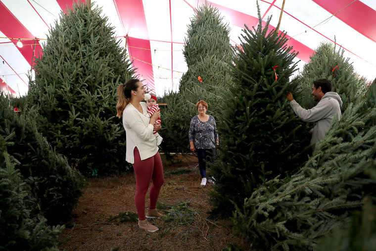 Image: Christmas Tree Prices Higher Than In Years Past Due To National Shortage