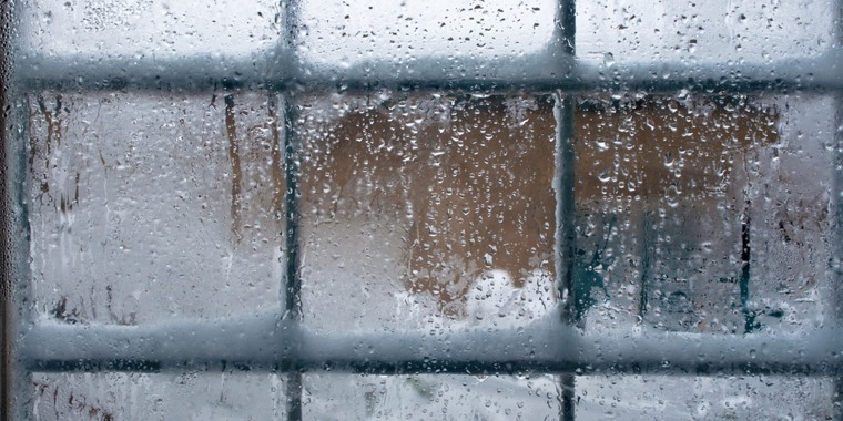 Winter Windows Tease