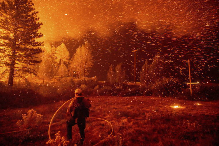 Image: Embers fly above a firefighter as he works to control a backfire as the Delta Fire burns in the Shasta-Trinity National Forest
