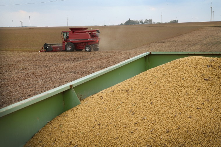Image: Greg Porth harvests soybeans near Worthington, Minnesota, in 2013.