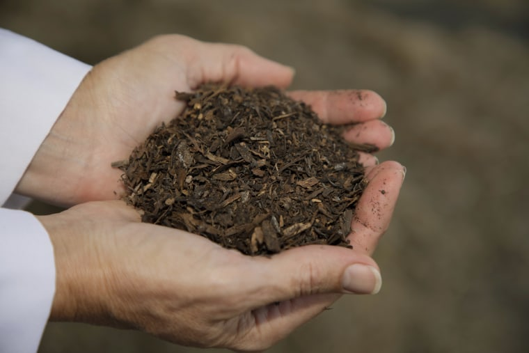 """The finished product in \""""human recomposition\"""" is soil that can then nourish new life."""
