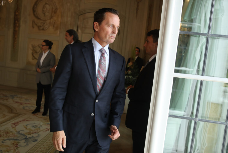 U.S. Ambassador Richard Grenell attends a reception for the international diplomatic corps hosted by German Chancellor Angela Merkel