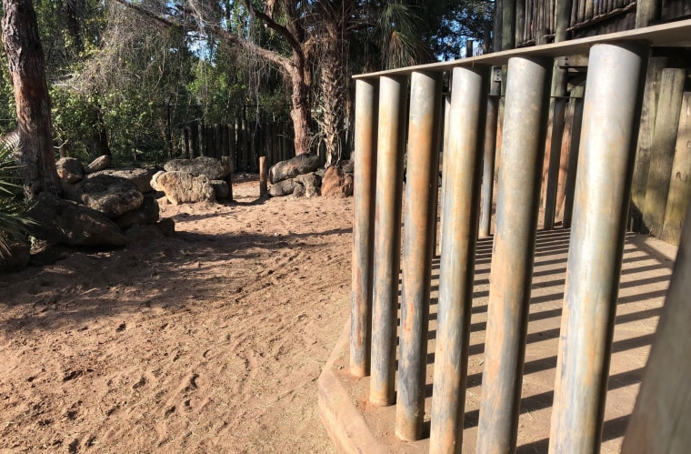 Image: The child fell through these bars at the rhino enclosure at the Brevard Zoo in Florida on Jan. 1, 2019.