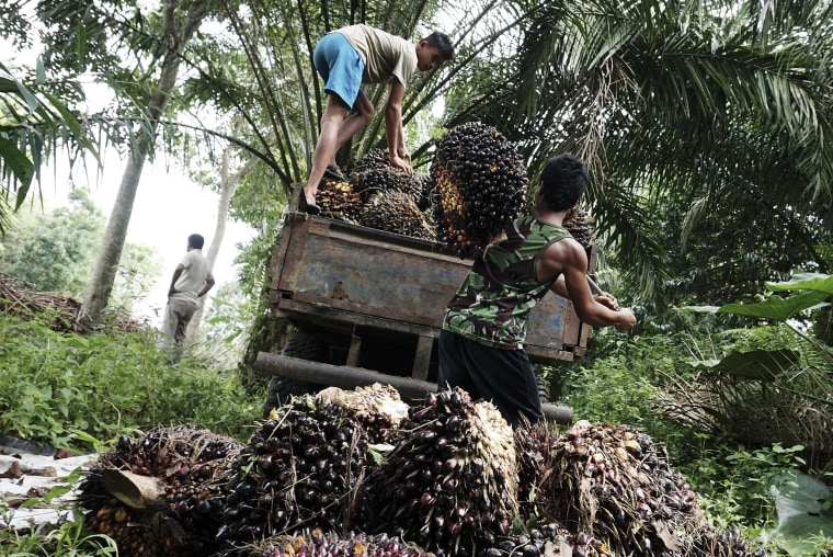 Image: Workers load palm fruits onto a truck at a palm oil plantation near Deli Serdang, Indonesia, on Jan. 18, 2017.
