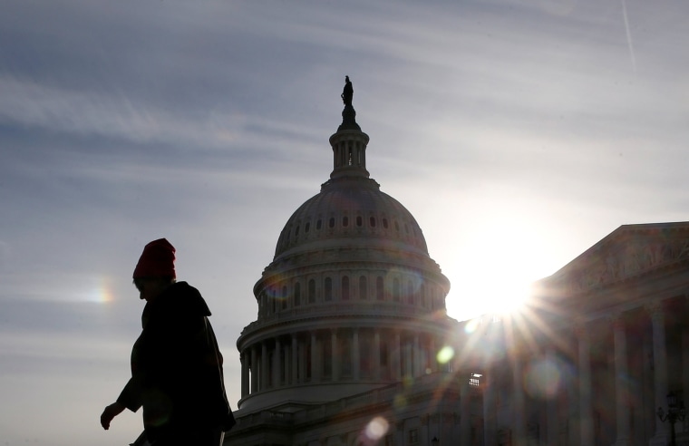 Image: A visitor walks by the U.S. Capitol on day 32 of a partial government shutdown in Washington
