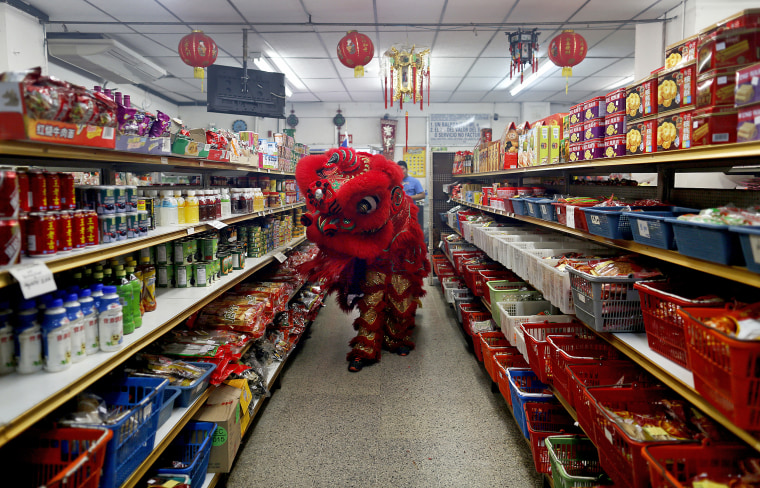 Dancers perform a lion dance inside a local shop during celebrations of the Chinese Lunar New Year of the Monkey in Chinatown in Panama City