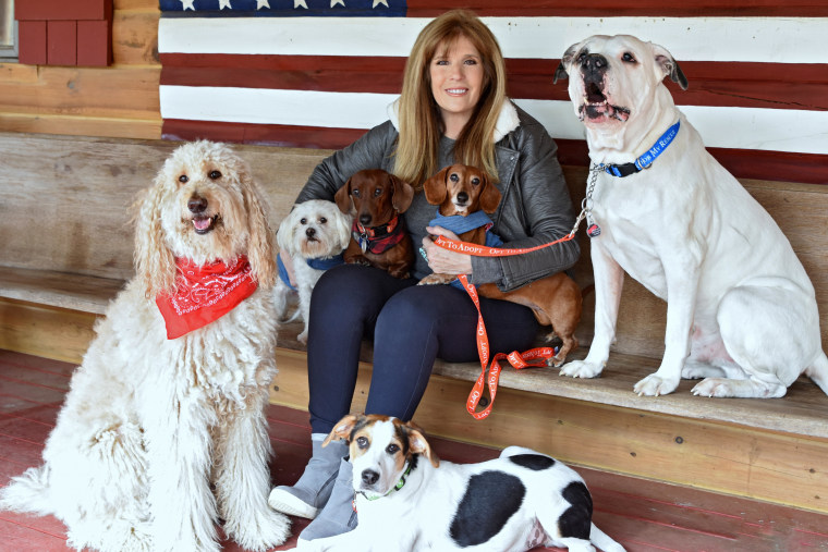 Jill Rappaport with her six dogs