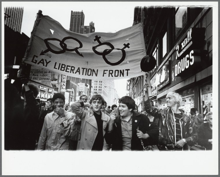"Image: ""Demonstration at City Hall, New York,"" 1973."