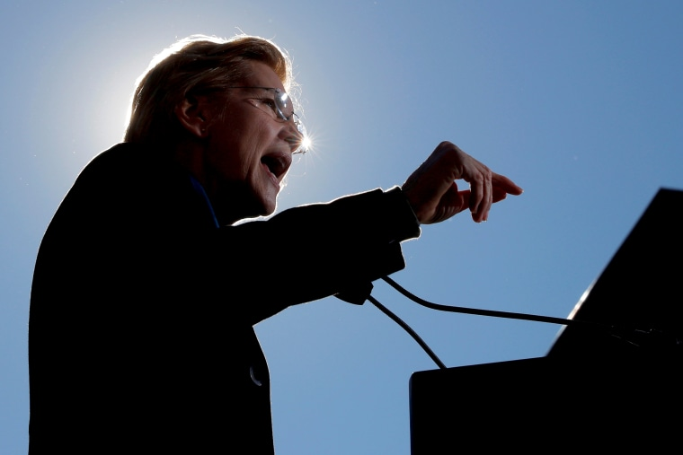 Image: Sen. Elizabeth Warren, D-Mass., speaks at a rally launching her bid for president in Massachusetts on Feb. 9, 2019.