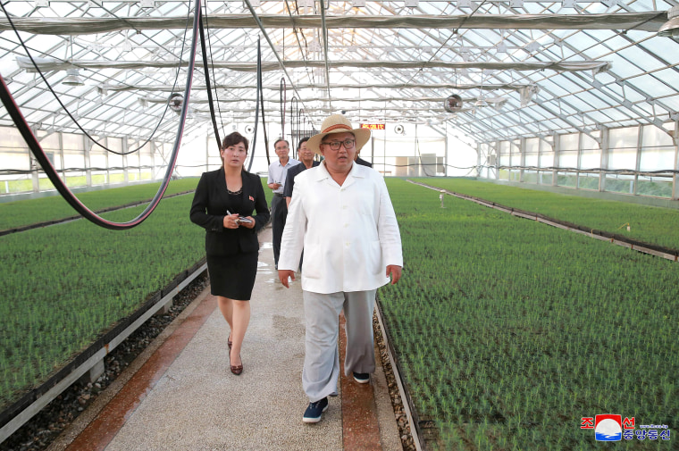North Korean leader Kim Jong Un gives field guidance as he visits a nursery in Kangwon Province in this undated photo released by North Korea's Korean Central News Agency (KCNA)