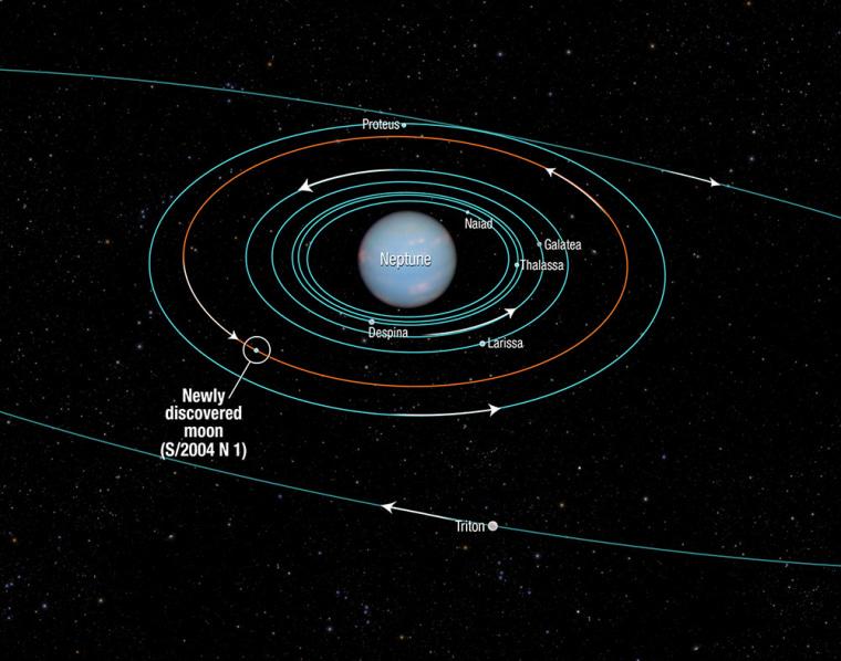 Image: Neptune Moon Diagram