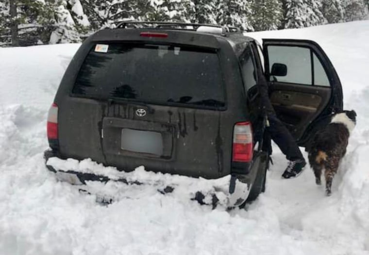 Image: Jeremy Taylor and his dog, Ally, were found alive after their vehicle was stuck in the snow for five days in Oregon.