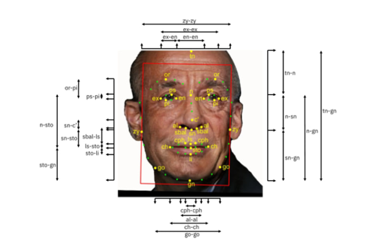 Image: Facial recognition measurements