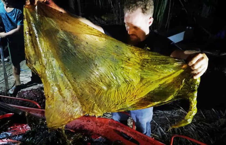 Image: Darrell Blatchley, director of D' Bone Collector Museum Inc., shows plastic waste found in the stomach of a Cuvier's beaked whale on the southern Philippine island of Mindanao on March 16, 2019.