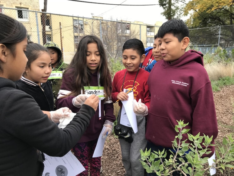 At Esperanza Elementary School in Los Angeles, students use their school garden to examine and identify different types of vegetation.
