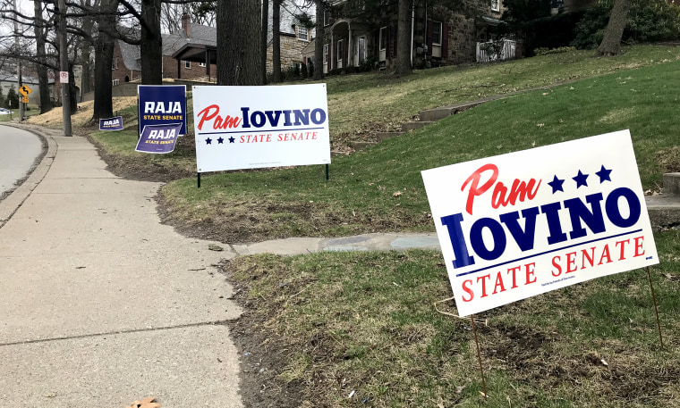 Campaign signs for Democrat Pam Iovino and Republican D. Raja line the streets in Mt. Lebanon, Pennsylvania on March 30, 2019.