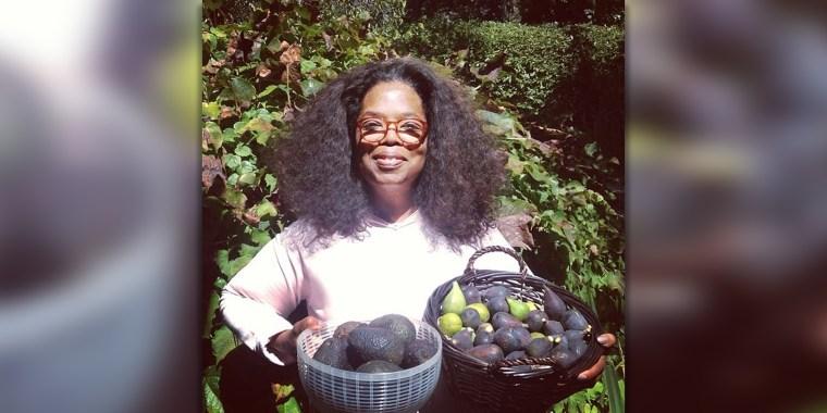 Oprah and avocados