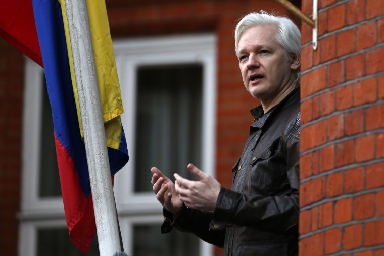 Image: WikiLeaks founder Julian Assange in 2017