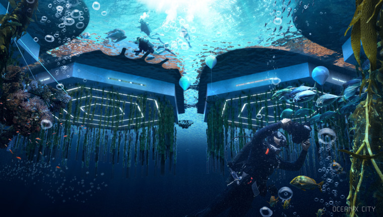 Below sea level, beneath the platforms, biorock floating reefs, seaweed, oysters, mussel, scallop and clam farming clean the water and accelerate ecosystem regeneration.