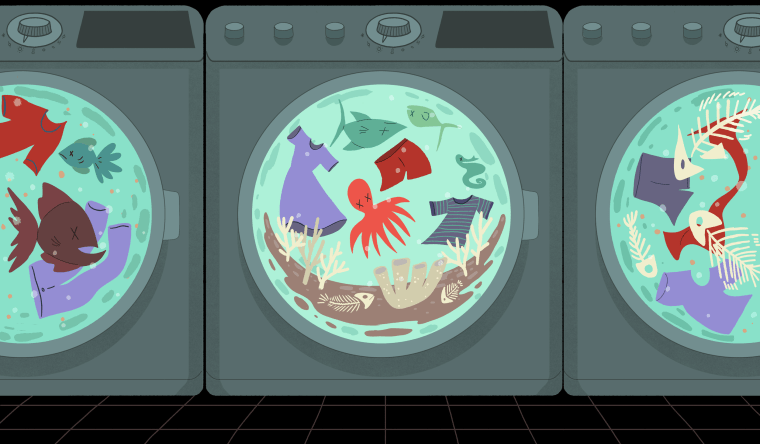 Illustration of front loading washing machines with clothes and dead fish swirling inside.