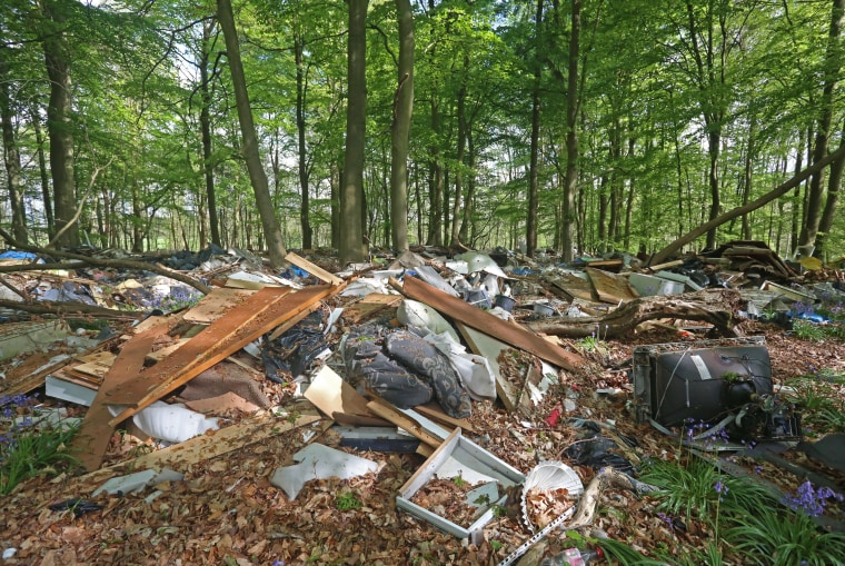 Image: Piles of trash that have been dumped in a Bluebell Wood on the Brocket Hall Estate on the outskirts of Welwyn Garden City in Hertfordshire