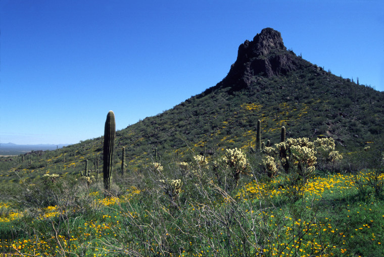 Picacho Peak in Arizona