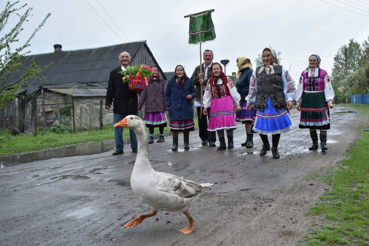 Image: A goose walks in the road as villagers take part in a Yurya religious ritual for good harvest in Lutki, Belarus on May 6, 2019.