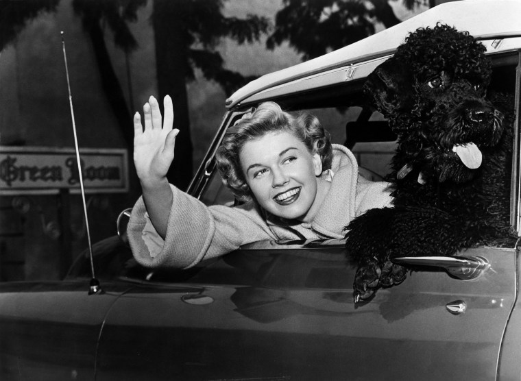 Doris Day with a poodle in her car circa 1955.