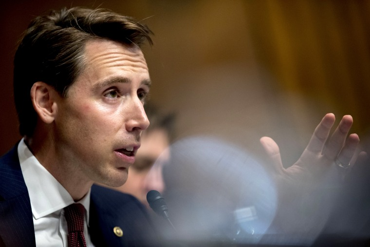 Image: Sen. Josh Hawley, R-Mo., speaks during a Senate Judiciary Committee hearing on May 1, 2019.